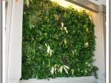 人造植物墙