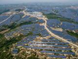大型光伏并网电站经验专业建设施工长江飞瑞能源公司