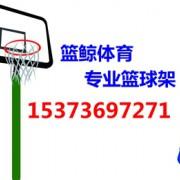 河北东岳文化体育用品制造有限公司的形象照片