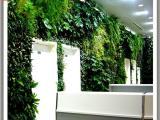 仿真植物墙造型