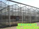 PC阳光板连栋温室大棚造价