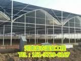 建造一亩连栋玻璃温室大棚花费情况