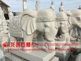 芝麻白石雕大象 元宝石大象 惠安石雕大象