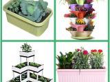 成都阳台菜园果蔬种植箱盆创意拼接满足立体种植