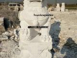 石狮子雕刻厂家汉白玉狮子哪里有 狮子现货出售