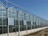 其实科技 V8-FH 玻璃智能温室