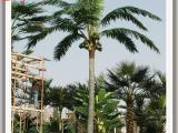 人造椰子树厂家
