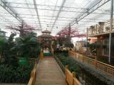 温室型生态餐厅/生态餐厅温室/阳光餐厅大棚简介