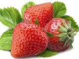 草莓浓缩粉、代加工、厂家直销、固体饮料、制粒包装