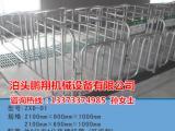 整体镀锌管定位栏 母猪定位栏 猪用定位栏 鹏翔养猪设备
