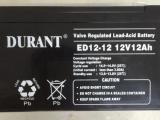 铅酸免维护电池 直流屏电池 杜兰特DURANT 湖南艾德迅