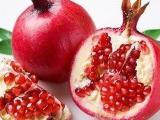专业进口水果的物流公司有哪些