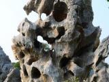 供应英德园林石 天然园林石 英德风景石 天然风景石