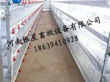 全自动阶梯式鸡笼售后地址丨蛋鸡笼价格【银星】