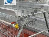 全自动阶梯式鸡笼售后厂家丨蛋鸡笼维修价格【银星】