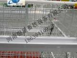 全自动阶梯式鸡笼设备供应丨蛋鸡笼批发厂家【银星】