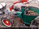马铃薯 土豆播种机