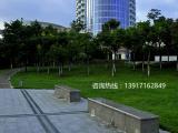 酒店绿化工程承接,上海酒店绿化乔灌木供应