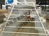 河南全自动阶梯式鸡笼生产地址丨蛋鸡笼设备价格【银星】