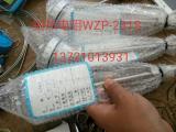 铂热电阻 PT100 WZP-231S