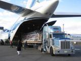 全球护肤品货运批量到国内进口清关 免税清关 国际货运物流公司