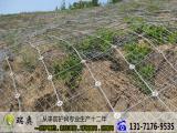 DO/08/300钢绳网_钢绳网价格_钢绳网厂家