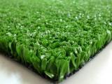 假草坪出售  塑料草坪批发厂家
