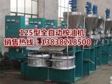 茶籽压榨机 全自动油茶籽压榨机打造高端天然茶油的首选