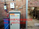 电蒸汽锅炉一台造纸行业都在用的生产设备