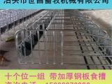 母猪定位栏养殖设备复合板限位栏