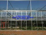 供应玻璃温室