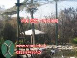 珍禽养殖防护网、珍禽笼舍网,华美专业不锈钢珍禽围栏网
