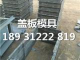 排水沟盖板模具,排水渠盖板模具原型