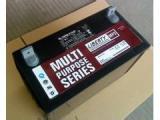 日月潭REDSUN12-120蓄电池120AHUPS后备电池