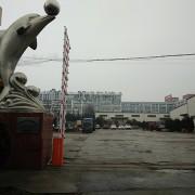 青岛海之航食品有限公司的形象照片