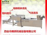 番石榴清洗机 瓜果生产线清洗设备