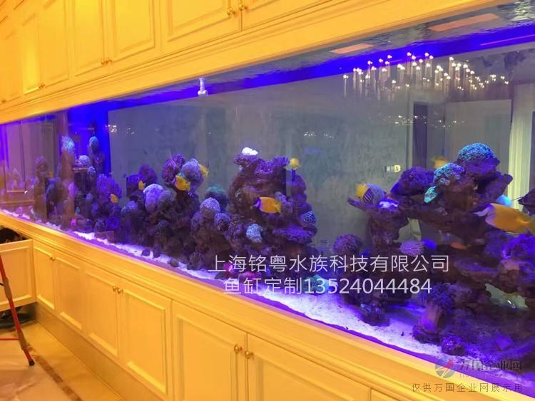 超白玻璃珊瑚观赏鱼缸造景 海底世界鱼缸 别墅大型镶嵌式鱼缸