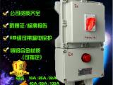 BLK52-10/3 ExdeIIBT6 ip55防爆断路器