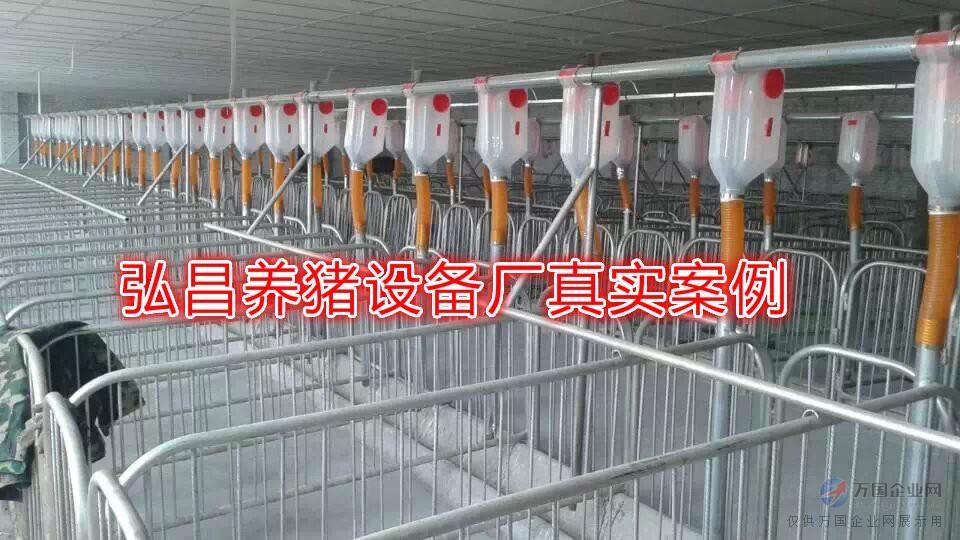 自场自动设计,养猪配料生产线,安装自动料线厂家