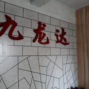 厦门九龙达贸易有限公司的形象照片