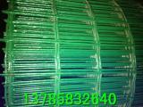 养鸡场铁丝网  荷兰网厂家直销   6*6孔铁丝网厂家