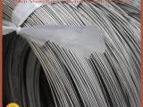 宝鸡供应钛丝 钛直丝 TA2钛盘丝 材质优良 性能稳定