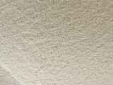 山东厂家供应大米蛋白粉
