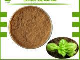 西安全奥 罗勒提取物粉10:1 保健品原料 圣罗勒叶提取物