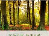 篮球木地板 北京篮球木地板 供应篮球木地板 篮球木地板厂家