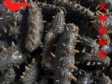 批发龙圣怡海参 中火候海参拉缸盐辽参 肉厚口感好 多种规格