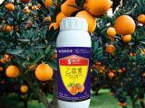 乙蒜素  乙蒜素是高效仿生杀菌剂 果蔬专用80%乙蒜素