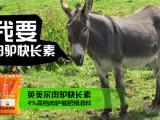 种驴的饲养管理技术 驴饲料的科学应用 驴预混料
