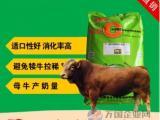 鲁西黄牛精料补充饲料 黄牛专用英美尔好饲料