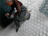 铅丝笼网生产厂家_铅丝网片_防汛水利铅丝笼网
